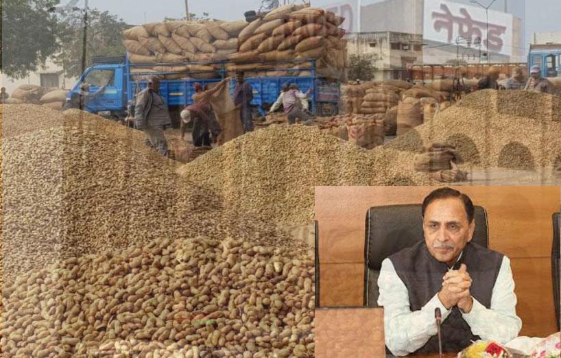गुजरात में मूंगफली के गोदामों में आग: नेफेड और रुपाणी सरकार दोनों दोषी