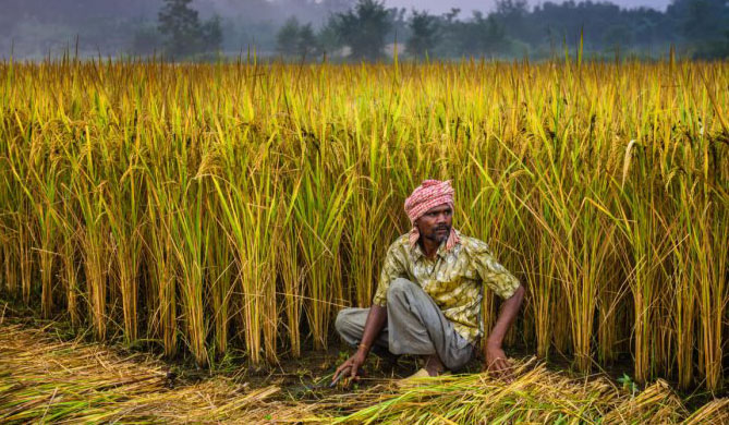 Photo of पीएम किसान के लिए कौन योग्य है; सरकार ने बताया