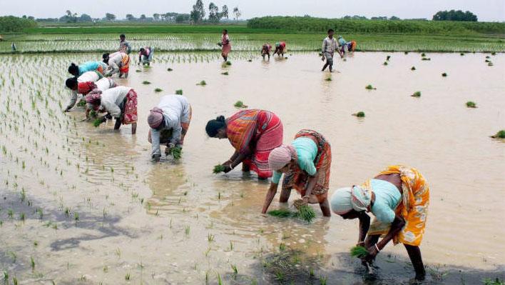 Photo of भंडारा जिला केंद्रीय सहकारी बैंक द्वारा किसानों की अच्छी सेवा