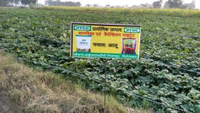 Photo of इफको के ऑर्गेनिक उत्पाद से किसानों के चेहरे पर आई मुस्कान