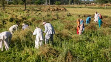 Photo of ऋण-अदायगी में किसानों की मदद करेगी सरकार