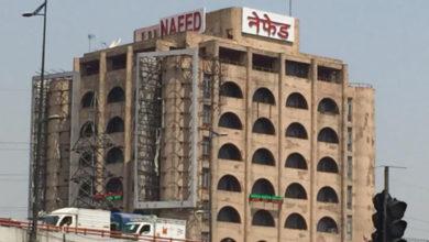 Photo of नेफेड 20 करोड़ परिवारों को करेगा दाल की आपूर्ति